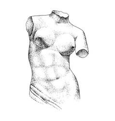antique statue classical sculpture venus vector image