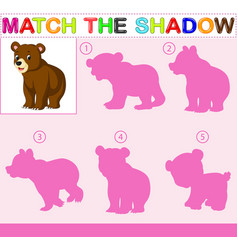 Find the correct shadow of the bear vector