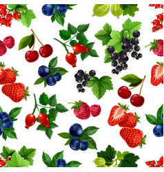 forest berries and fruits seamless pattern vector image