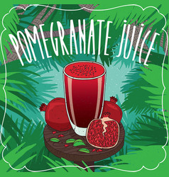 fresh pomegranate juice in glass with ripe fruits vector image