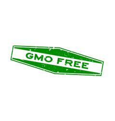 Grunge green gmo free word hexagon rubber seal vector