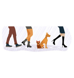 homeless cat and dog between feet vector image