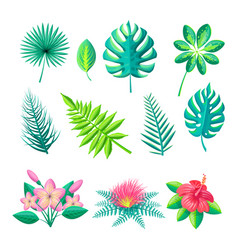 leaves and flowers collection vector image