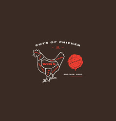 stock chicken cuts diagram in thin line style vector image
