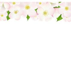 Apple Tree Flowers Border vector image