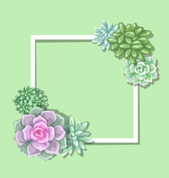 card with succulents echeveria jade plant and vector image vector image