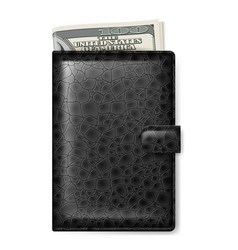 Black leather wallet with dollars on white vector