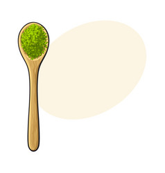 drawing of bamboo wooden spoon with matcha green vector image