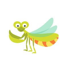 big green mantis with huge eyes and long vector image vector image