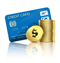 credit card and coins vector image vector image