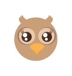 kawaii face owl animal fun vector image