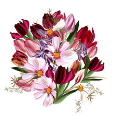 Beautiful with tulip flowers vector