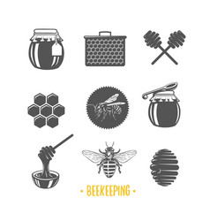 Beekeeping vector