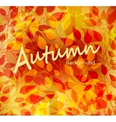 Bright autumn abstract background vector