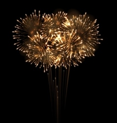 Festive Grandiose Firework Explode Bursting vector image