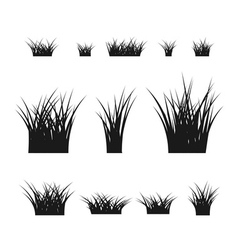 Grass bushes set black plant vector