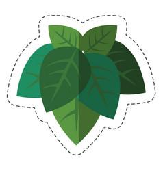 Green plant design vector