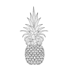 Hand drawn ornate Pineapple zentangle tribal vector