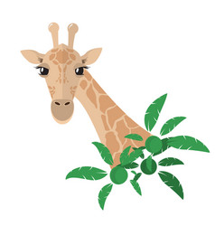head and neck of a giraffe in a flat style with vector image