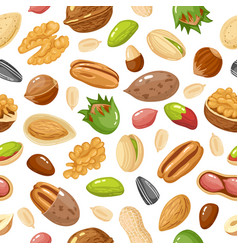 seeds and nuts pattern nut grain and seed vector image