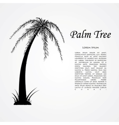 silhouette palm tree vector image