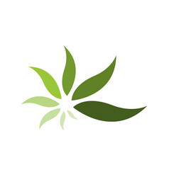 simple and modern green leaf logo elements vector image