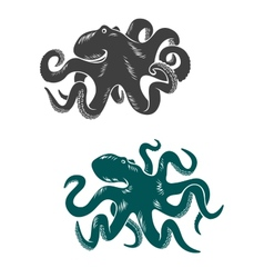 Octopus with waving tentacles vector image vector image