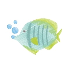 hand drawing exotic fish sealife freshwater vector image vector image