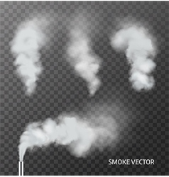 Realistic smoke steam on transparent background vector image