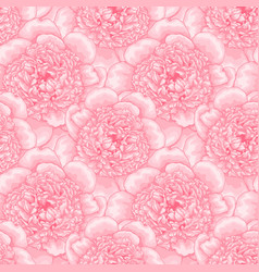 beautiful seamless pattern pink peonies design vector image