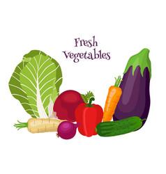 Fresh vegetables - bok choy eggplant carrot vector