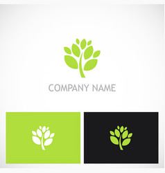 green tree plant nature logo vector image