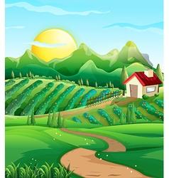 Scene with vegetables in farmyard vector