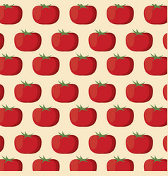 tomato nutrition seamless pattern image vector image