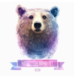 set of watercolor Cute bear vector image vector image