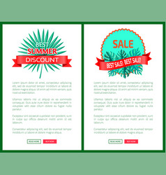 best summer discount sale promo emblems with palms vector image