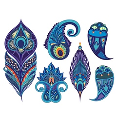 Collection of peacock elements vector image