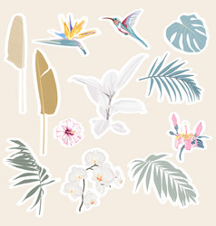 cute tropical set different stickers vector image