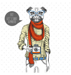 Retro hipster animal pug-dog with photo camera vector