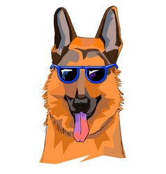 the of shepherd with glasses this is vector image