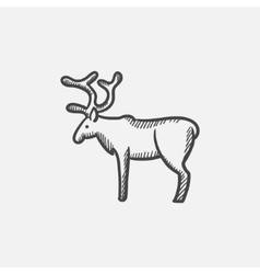 Deer sketch icon vector image
