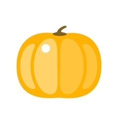 Fresh orange pumpkin isolated vector image
