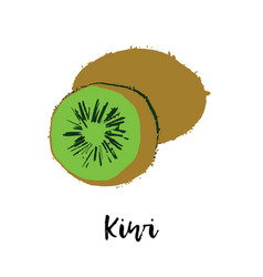 Kiwi fruit drawing healthy food vector