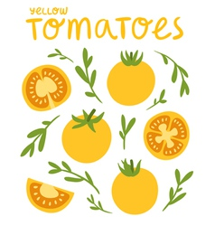 Yellow tomatoes vector image vector image