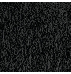 leather material vector image vector image