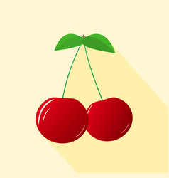 Cherries on a branch vector