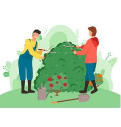 Gardeners cutting bushes cartoon vector