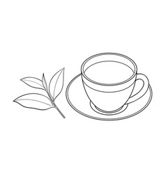 Glass cup saucer and fresh tea leaf vector