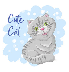 postcard cute cat print on clothes vector image