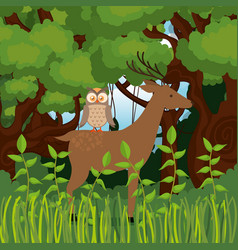 Wild animals in the jungle scene vector